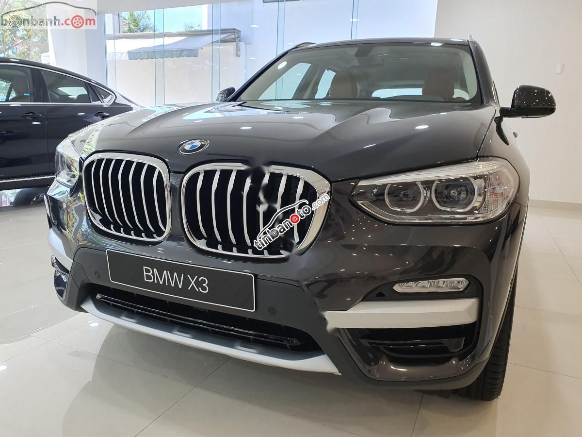 ban oto Nhap khau BMW X3   2019